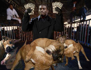 Dog Fighting Vick Michael Vick Indicted ...