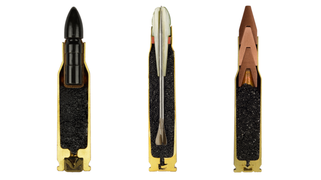 Cross-Section Bullets Are Beautiful for Something That Could Kill You