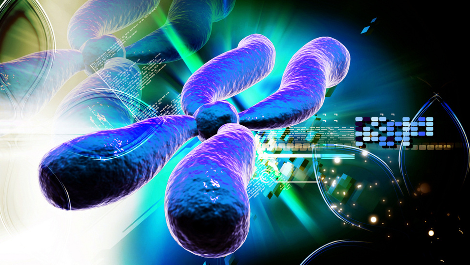 How Artificial Chromosomes Could Transform Humanity