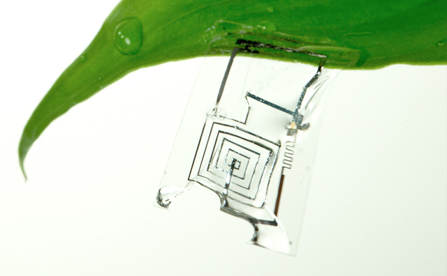 """Born to Die"" Electronics Dissolve When Wet"