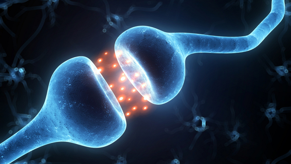 theories on how consciousness arises Theories of stuttering1  speech blunder, and can only be brought to consciousness  and thus arises the conflict between defective speech.
