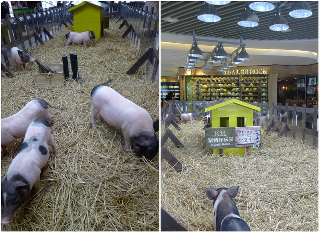 An Urban Farm In the Most Unlikely Location: A Shanghai Mall