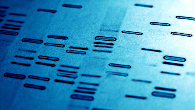 Engineers Have Invented a Programming Language to Build DNA