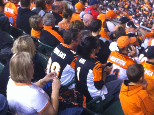 Another Raccoon Runs Wild In Stands During Bengals Game