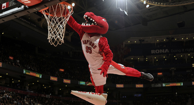 Raptors' Mascot Tears Achilles, Is Out For Season