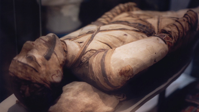 How Ancient Embalmers Pulled the Brains and Guts Out of Mummies