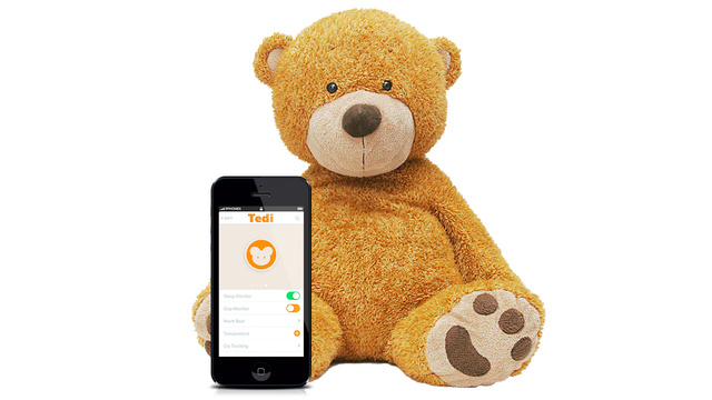 A Sensor-Packed Teddy Bear