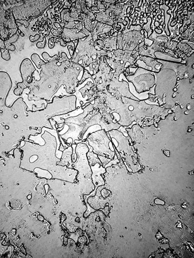 Tears of joy and tears of sadness look different under the microscope