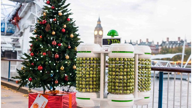 This Christmas Tree Is Lit by 1,000 Brussels Sprouts