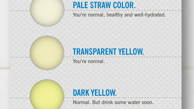 What The Colour Of Your Pee Says About Your Health