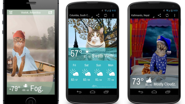 Get the Weather Forecast From a Cat