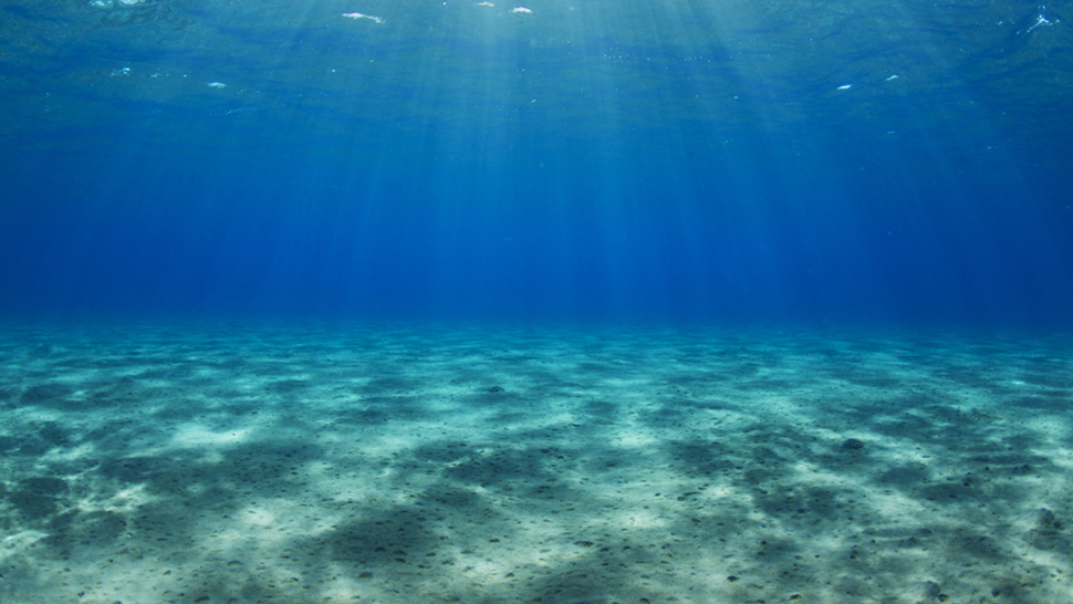 Researchers Discover H... Underwater Sand Texture