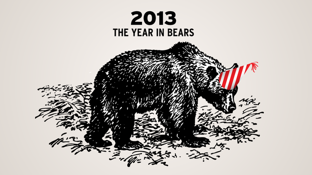 The Year in Bears