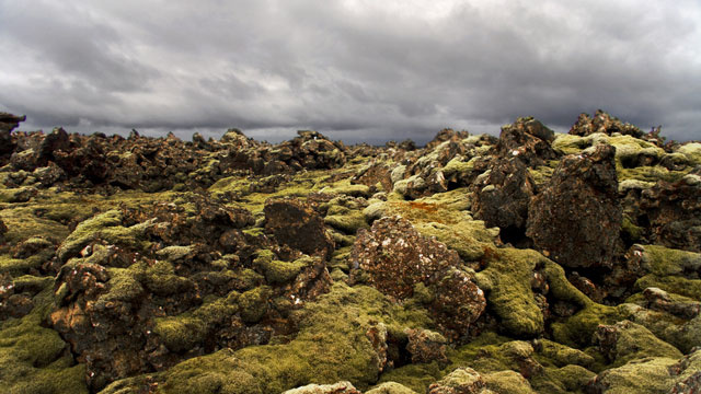 Iceland Stops Work on a New Highway That Would Destroy Elf Habitats
