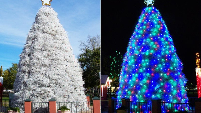 New 7 Of The World's Most Awesome Alternative Christmas Trees  - Christmas Trees Ri