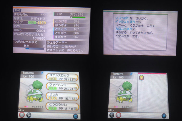 Illegal Shiny Torterra