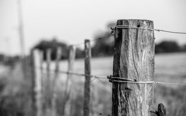 Barbed Wire Fences Were An