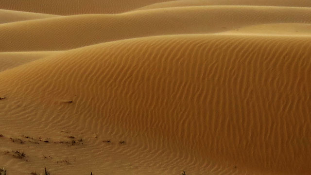 Scientists Flattened a Desert