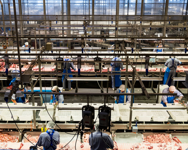 Take a Visual Tour of the World's Most Modern Slaughterhouse