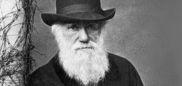 """""""Darwin Day"""" is being officially considered by Congress!"""