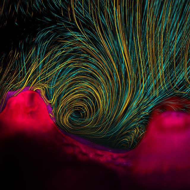 The Best Science Visualizations of the Year