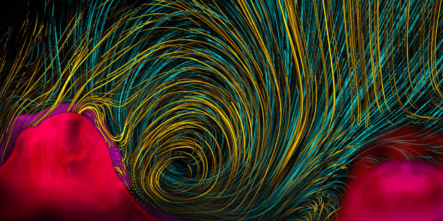 The Best Science Visualisations Of The Year