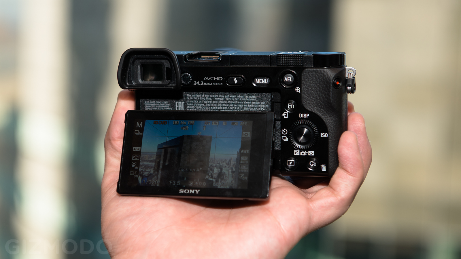 Sony A6000: A Sweet Interchangeable-Lens Camera With a Touch Of Sour