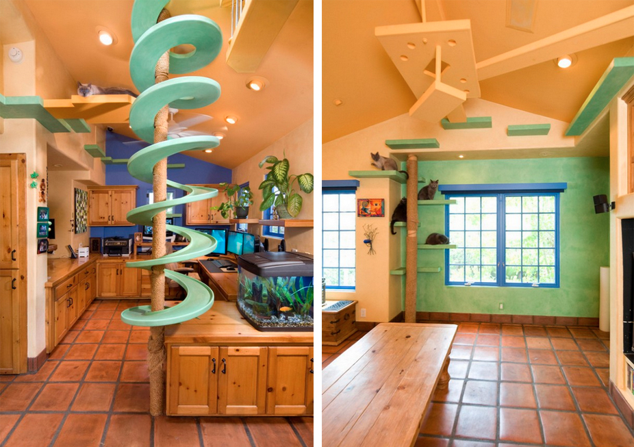 A $US35,000 Renovation Turned This Suburban Home Into a Cat Palace