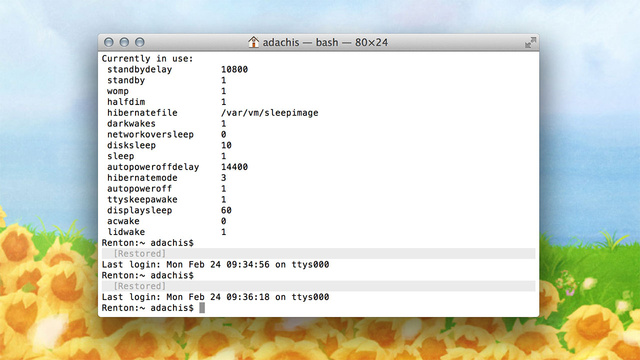 Fix Your Slow-Waking MacBook with One Terminal Command
