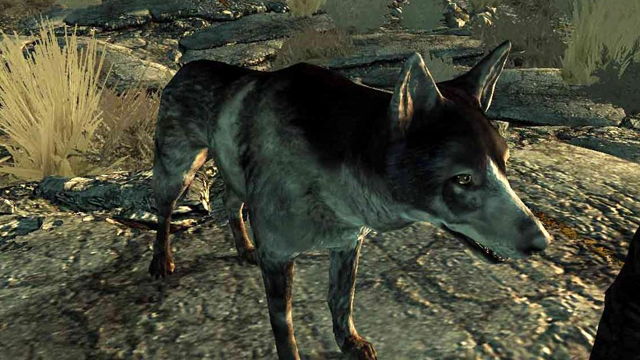 The Most Awesome Video Game Dog Companions